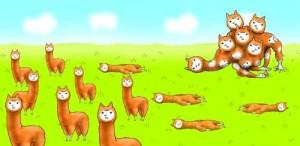 Alpaca-Evolution