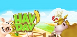 Hay-Day1
