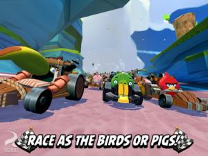 Angry-Birds-Go4-300x225