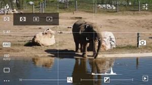 DSLR-Camera-Pro36-300x168