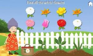 Grandmas-Garden36-300x180