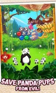Panda-P4op-1-180x300