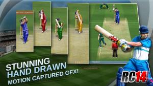Real-cricket-300